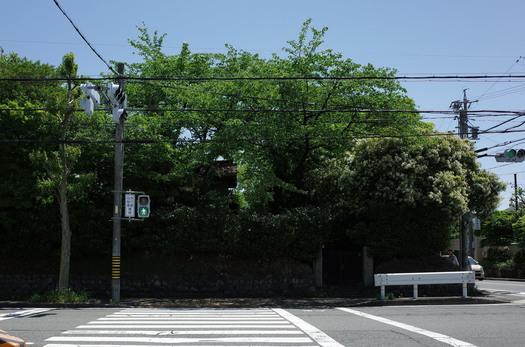150507_shikiti2.jpg